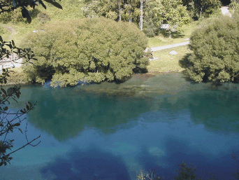 waikaki-river.jpg
